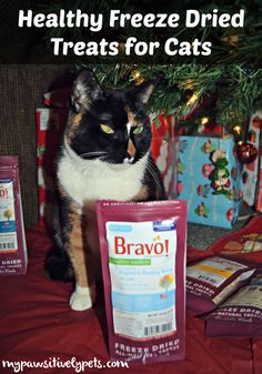 Bravo Freeze Dried Cat Treats Will Make You Purr + a #giveaway http://www.mypawsitivelypets.com/2015/12/bravo-freeze-dried-cat-treats-will-make.html