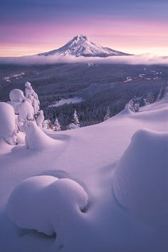 Mt. Hood in all it's snowy glory-