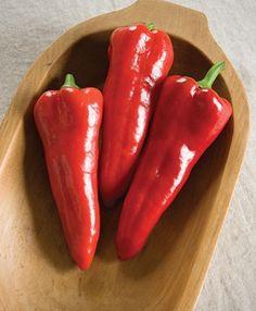 Carmen Italian Sweet Pepper