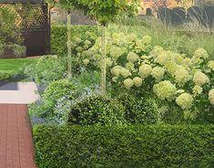 Landscape Architecture Design, Garden Projects, Fields, Behance, Photoshop, Graphic Design, Gallery, Check, Plants