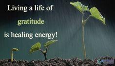 #quotes #quotestoliveby #quotesonlife #quoteoftheday #wordsofwisdom #wordstoliveby #spirituality #spiritualgrowth