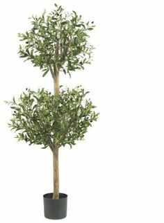 4.5' Olive Double Topiary Silk Tree 4.5' Olive Double Topiary Silk Tree by DSD. $508.50. Please refer to SKU# ATR25212685 when you inquire.. Shipping Weight: 12.00 lbs. Picture may wrongfully represent. Please read title and description thoroughly.. Brand Name: DSD Mfg#: 1067016. This product may be prohibited inbound shipment to your destination.. 4. 5' Olive Double Topiary Silk Tree. Delicate, yet sturdy whimsical yet stately this Olive Topiary fits snugly into any decor, ...