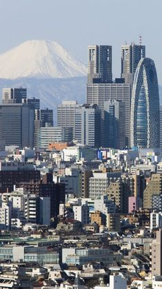 Tokyo with Mount Fuji in the background, Japan