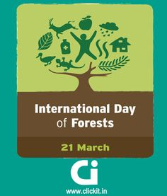 International Day of Forests | clickit