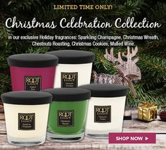 Cheers to the Christmas season! Try these five brand new festive fragrances that will make your Holiday season merry and bright!! Shop the Christmas Celebration Collection online at rootcandles.com (and rootcandles.co.uk for our friends across the pond). #NationalCandleMonth #allnatural #beeswax #madeinAmerica #candles #holidayfragrances #christmas