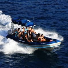 Blue Water Rafting.  Contact us at 808-879-1922 ext 50 or email waileaactivities@gmail.com to make a reservation.