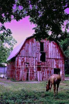 Old Barn.photo by Layne Adams I love barns-