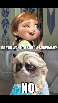 ...maybe later. Grumpy Cat