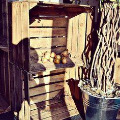 #obstkisten #holzkisten #dekokisten #dekomitobstkisten #gebrauchtekisten #braunekisten #äpfel #apfel #herbstdeko #deko #dekoration #deco #decoration #moebelideal #wohnenideal #aurich #middels #norden #nordsee #nordseeküste #ostfriesland