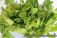 Você imaginava que o agrião é o mais nutritivo dos vegetais? Agrião o mais Nutritivo dos Vegetais!  Artigo aqui => http://www.gulosoesaudavel.com.br/2015/09/25/agriao-mais-nutritivo-vegetais/