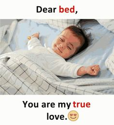 Check out these funniest How I Sleep Memes which are so hilarious that you will find it difficult to not laugh. Funny Facts, Weird Facts, Funny Jokes, Funny Comedy, Funny Humour, Hilarious Quotes, Funny Minion, True Facts, It's Funny