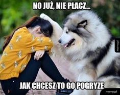 Ideas for funny animals husky dogs Cute Baby Animals, Animals And Pets, Funny Animals, Cute Puppies, Cute Dogs, Dogs And Puppies, Doggies, Funny Dog Pictures, My Animal