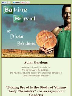 Check out this newsletter from Solar Gardens