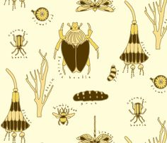 insects by Holli_zollinger