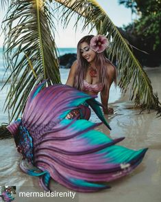 Love the tail and her hair color tail is by Finfolk Productions and mermaid is MermaidSirenity Fantasy Mermaids, Unicorns And Mermaids, Mermaids And Mermen, Siren Mermaid, Mermaid Cove, Mermaid Art, Realistic Mermaid Drawing, Mermaid Drawings, Mermaid Photo Shoot