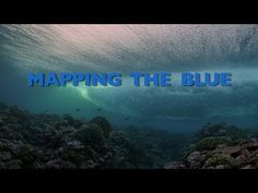 Our partners at the Living Oceans Foundation won the Conservation and Innovation Award at the Blue Ocean film Festival for their film: World's Largest Marine Park: Mapping the Blue about marine reserve in the Cook Islands. The movie is available on YouTube! Congratulations on a great Blue Hope!