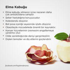 Bol şifalı: Elma Kabuğu