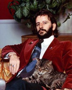 celebrities and their cats | Ringo Starr #cats #famouscats #RingoStarr