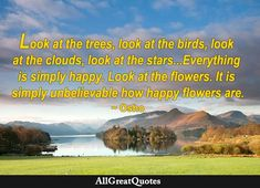 Happy Flowers, Look At The Stars, Osho, Daily Quotes, Quote Of The Day, Everything, Trees, Birds, Clouds