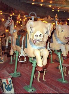 Europa Park Carousel  Demeyer pigs front view