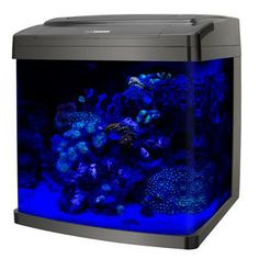 Oceanic biocube aquarium stand fish tank stand and for 55 gallon fish tank petco