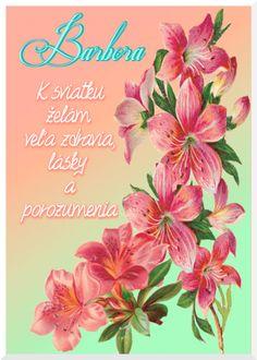 Barbora K sviatku želám veľa zdravia, lásky a porozumenia