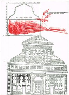 Mark Powell - dead bird - ballpoint pen drawing