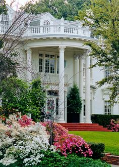 CURB APPEAL – another great example of beautiful design. Portico and Azaleas, Highland Park, in Dallas, Texas.