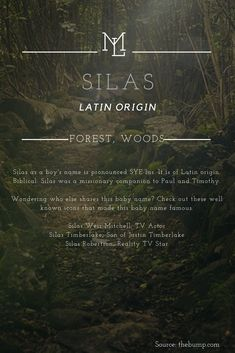 """Names: Silas Latin origin meaning """"Forest, Woods"""" - I Love them all ! -Character Names: Silas Latin origin meaning """"Forest, Woods"""" - I Love them all ! Pretty Names, Cute Names, Unique Baby Names, Unique Names With Meaning, Writing A Book, Writing Tips, Baby Names And Meanings, Name Meanings, Writing"""
