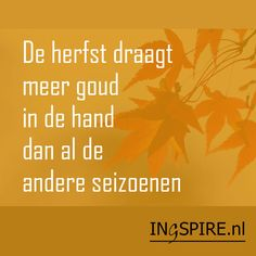 Autumn wears more gold in it than all the other seasons. Dutch Quotes, Autumn Inspiration, Haiku, Texts, Seasons, Feelings, Life, Bullet Journal, Fall