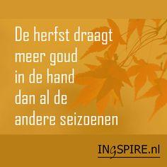Spreuk: de herfst draagt meer goud in de hand dan al de andere seizoenen.