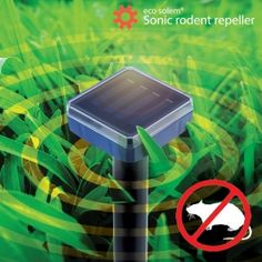OUTLET Eco Solem Solar Mouse Repeller (No packaging) - Kinebuy