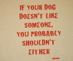 more than sayings: If your dog doesn't like someone