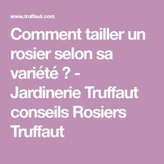 Comment tailler un rosier selon sa variété ? - Jardinerie Truffaut conseils Rosiers Truffaut