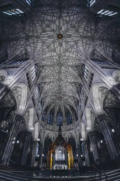 Love is hope. It fuels our dreams... : Photo St Patrick's Cathedral