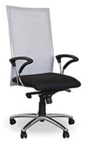 executive office chairs in cape town Executive Office Chairs, Cape Town, Furniture, Home Decor, Decoration Home, Room Decor, Home Furnishings, Home Interior Design, Home Decoration
