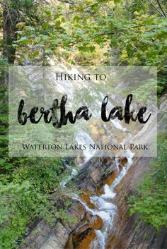 Hiking to Bertha Lake in Waterton Lakes National Park | The hike to Bertha Lake in Alberta's Waterton Lakes National Park is strenuous and challenging as the trail is a steady uphill climb and features some steep switchbacks along the way, but it is well worth the effort. There are incredible views of the stunning landscapes along the way (waterfalls and mountains) and the lake itself is beautiful and serene. Check out my blog post to read more about this hike and see more photos.