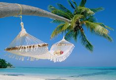 Maldives Hammock Beach - There's nothing like falling asleep to the sound of the ocean. Hammock Beach, Hammocks, Rope Hammock, Backyard Hammock, Outdoor Hammock, Hanging Hammock, Hammock Swing, Outdoor Pool, Strand Wallpaper