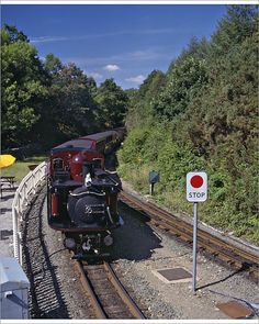size: Photographic Print: Ffestiniog Railway at Tan-Y-Bwlch, the Busiest of the North Wales Narrow Gauge Railways by Nigel Blythe : Artists Heritage Railway, Snowdonia National Park, North Wales, Custom Decks, Uk Photos, Adventure Activities, A4 Poster, Posters, Underwater World
