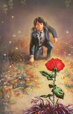 By Ned Dameron. Jake jumps the fence to the empty lot, finds the key, plus a dying rose that has a universe inside of it.