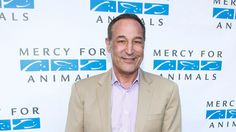 "Sam Simon, the co-creator of ""The Simpsons"" has died  Samuel Michael ""Sam"" Simon was an American director, producer, writer, boxing manager and philanthropist. While at Stanford University, Simon worked as a newspaper cartoonist and after graduating became a storyboard artist at Filmation Studios. Wikipedia  Born: June 6, 1955 (age 59), California  Partner: Jenna Stewart  Education: Stanford University"