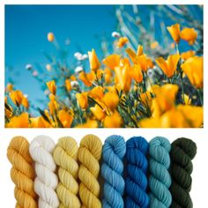 Color inspiration for baby blanket Dyeing Yarn, Color Inspiration, Crochet Hooks, Bloom, Blanket, Mini, Baby, Collection, Crochet