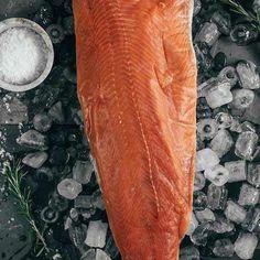 Coho Salmon Fillets - 10 lbs