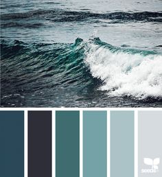 Color Sea | Design Seeds