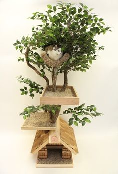 transform an old artificial tree into a cool cat tower???
