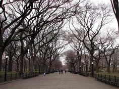 פורטל תמונות מכל העולם :: סנטרל פארק :: ניו-יורק. סנטרל פארק