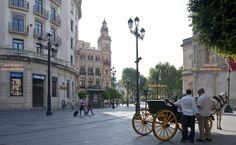 Seville Flor Naranja Aparment : Location ... Situación
