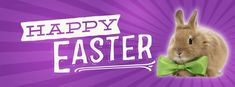 Easter - Happy Easter Bunny with Bowtie - Free Facebook Covers, Facebook Timeline Profile Covers #Easter #Holiday #EasterBunny #TimelineCover