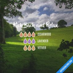Kick Back and Relax - Essential Oil Diffuser Blend