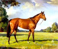 Barbaro - Pastel on masonite by Andre Pater, 2007
